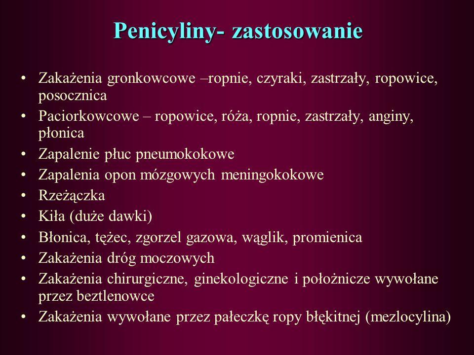 Penicyliny Benzylopenicyliny (penicylina G) Fenoksypenicyliny (penicylina V, fenetycylina) Izoksazolilopenicyliny (oksacylina, kloksacylina) Aminopeni