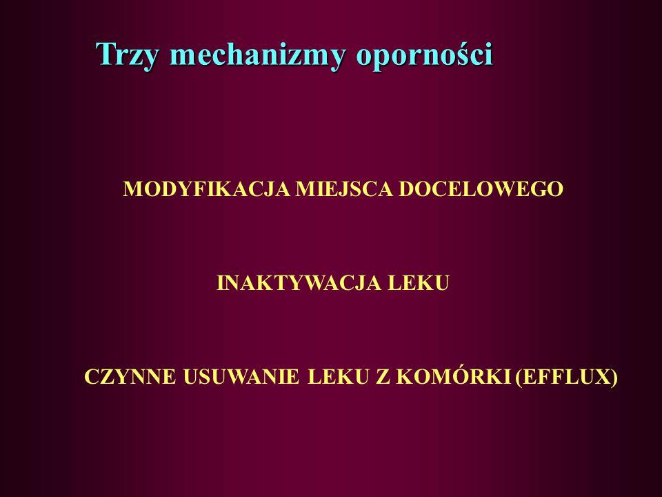 STREPTOGRAMINY MIKAMYCYNY PRISTINAMYCYNY OSTREOMYCYNY WIRGINAMYCYNY DZIAŁANIE: - bakteriostatyczne - hamowanie biosyntezy białka na poziomie podjednos