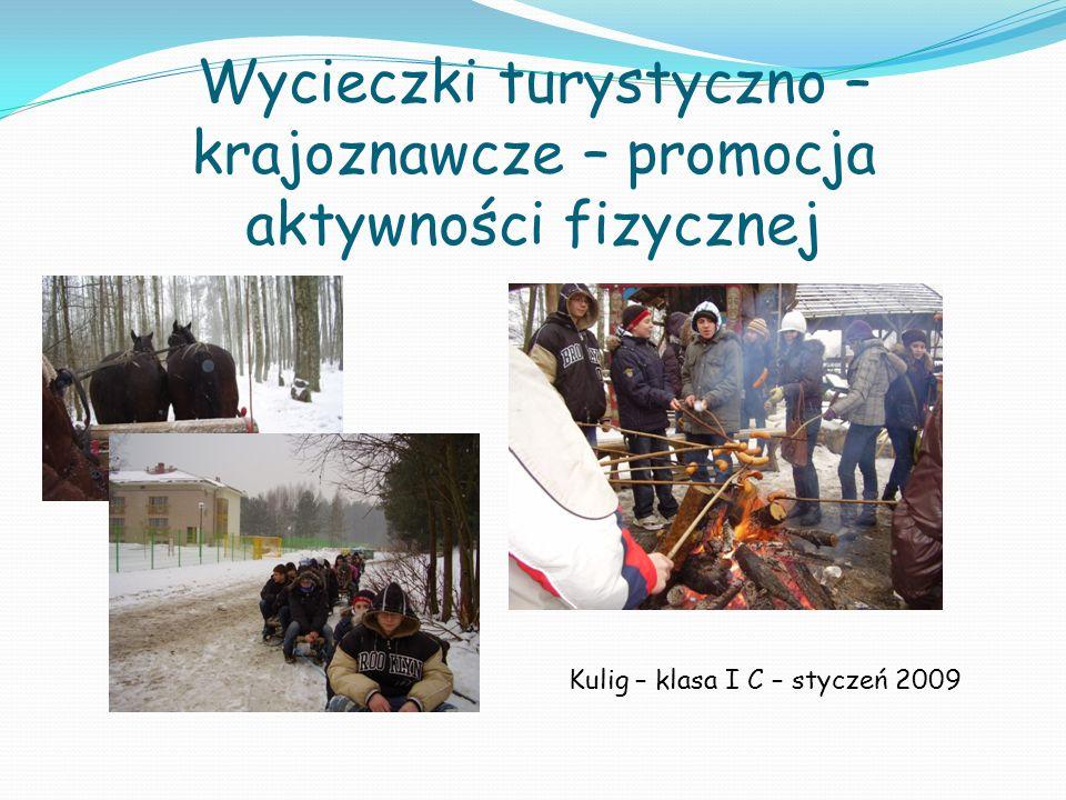 Wycieczki turystyczno – krajoznawcze – promocja aktywności fizycznej Kulig – klasa I C – styczeń 2009