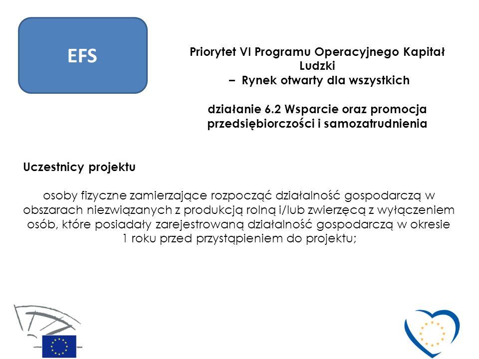 EFS Priorytet VI Programu Operacyjnego Kapitał Ludzki – Rynek otwarty dla wszystkich działanie 6.2 Wsparcie oraz promocja przedsiębiorczości i samozat