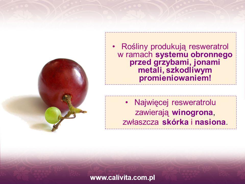 www.calivita.com.pl Rośliny produkują resweratrol w ramach systemu obronnego przed grzybami, jonami metali, szkodliwym promieniowaniem! Najwięcej resw