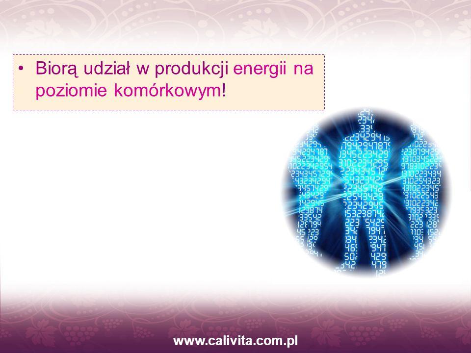 www.calivita.com.pl Biorą udział w produkcji energii na poziomie komórkowym!