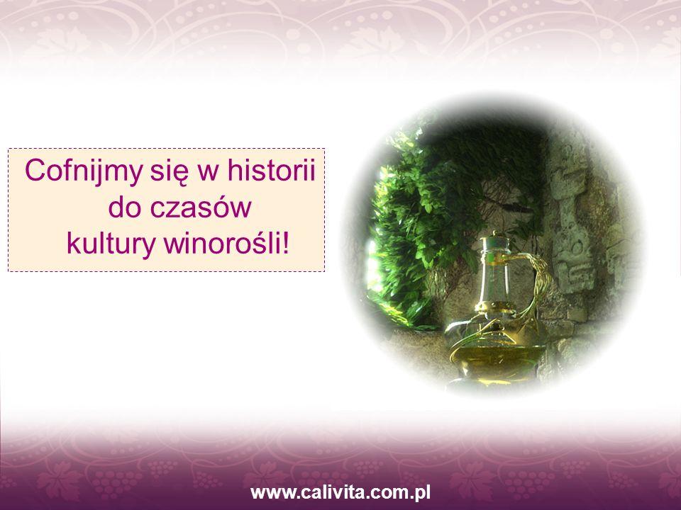 www.calivita.com.pl Cieszył się popularnością, prowadził radosne życie, chciał uszczęśliwiać ludzi wokół siebie.