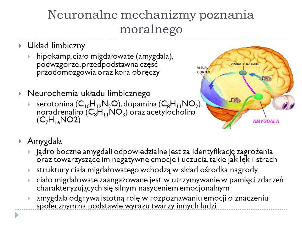 Neuronalne mechanizmy poznania moralnego Układ limbiczny hipokamp, ciało migdałowate (amygdala), podwzgórze, przedpodstawna część przodomózgowia oraz