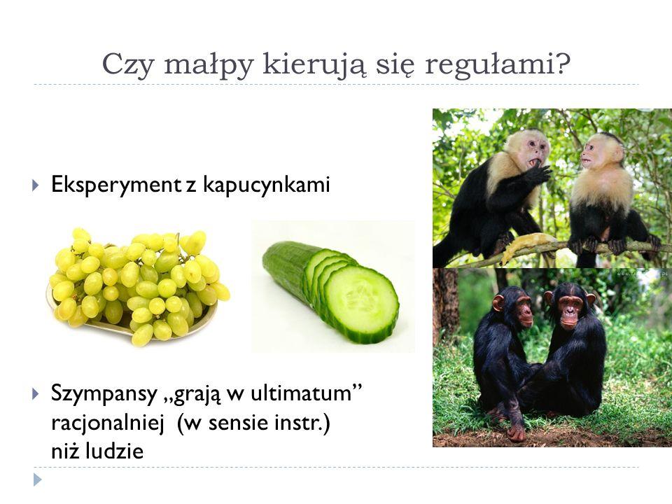 Eksperyment z kapucynkami Szympansy grają w ultimatum racjonalniej (w sensie instr.) niż ludzie Czy małpy kierują się regułami?
