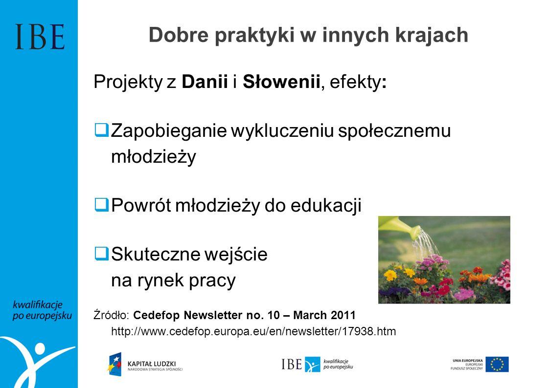 Dobre praktyki w innych krajach Projekty z Danii i Słowenii, efekty: Zapobieganie wykluczeniu społecznemu młodzieży Powrót młodzieży do edukacji Skute