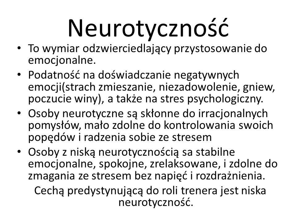 Neurotyczność To wymiar odzwierciedlający przystosowanie do emocjonalne. Podatność na doświadczanie negatywnych emocji(strach zmieszanie, niezadowolen