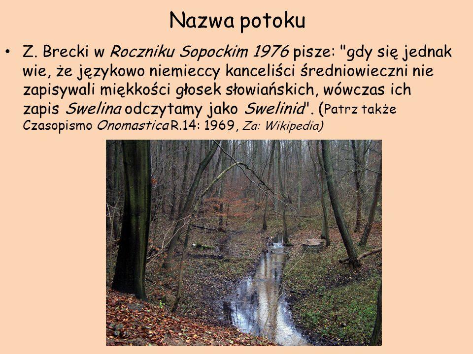 Nazwa potoku Z. Brecki w Roczniku Sopockim 1976 pisze: