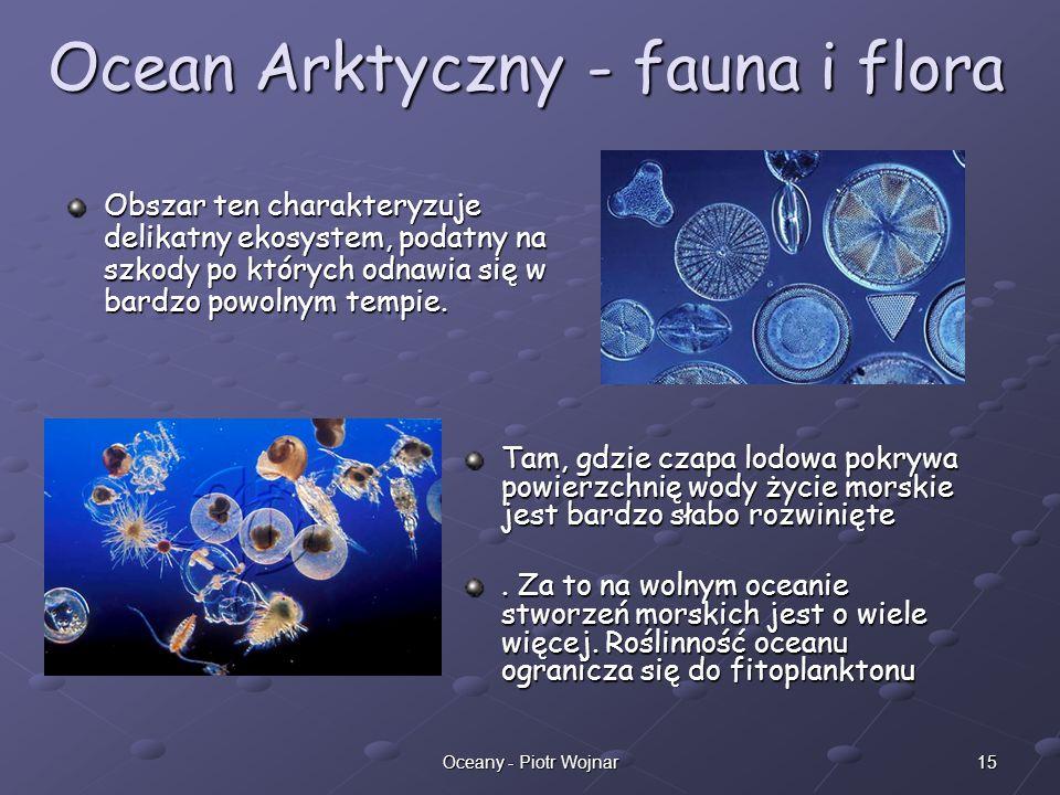 15Oceany - Piotr Wojnar Ocean Arktyczny - fauna i flora Obszar ten charakteryzuje delikatny ekosystem, podatny na szkody po których odnawia się w bard