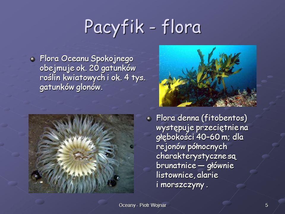 6Oceany - Piotr Wojnar Ocean Atlantycki (Atlantyk) Ocean Atlantycki (Atlantyk) – drugi pod względem wielkości ocean na Ziemi pokrywający około jednej piątej jej powierzchni.