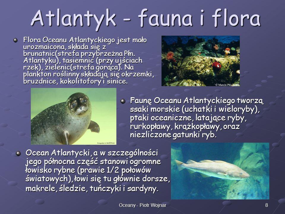 8Oceany - Piotr Wojnar Atlantyk - fauna i flora Flora Oceanu Atlantyckiego jest mało urozmaicona, składa się z brunatnic(strefa przybrzeżna Płn. Atlan