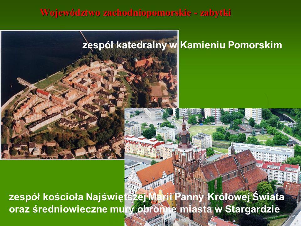 Województwo zachodniopomorskie - pałace Najbardziej okazałymi są Zamek Książąt Pomorskich w Szczecinie oraz Darłowie Zamki znajdują się: w Białogardzie, Swobnicy, Świdwinie