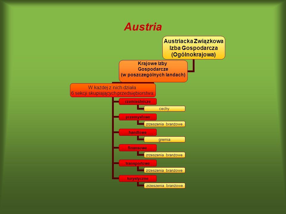 Austria Austriacka Związkowa Izba Gospodarcza (Ogólnokrajowa) Krajowe Izby Gospodarcze (w poszczególnych landach) W każdej z nich działa 6 sekcji skup