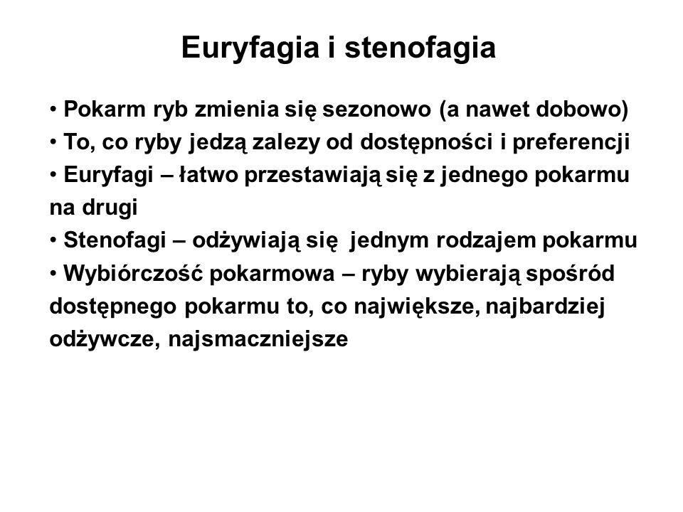 Euryfagia i stenofagia Pokarm ryb zmienia się sezonowo (a nawet dobowo) To, co ryby jedzą zalezy od dostępności i preferencji Euryfagi – łatwo przesta