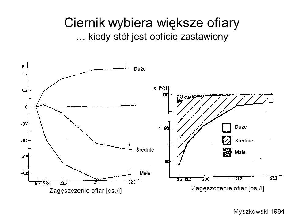 Myszkowski 1984 Zagęszczenie ofiar [os./l] Duże Średnie Małe Duże Średnie Małe Ciernik wybiera większe ofiary … kiedy stół jest obficie zastawiony
