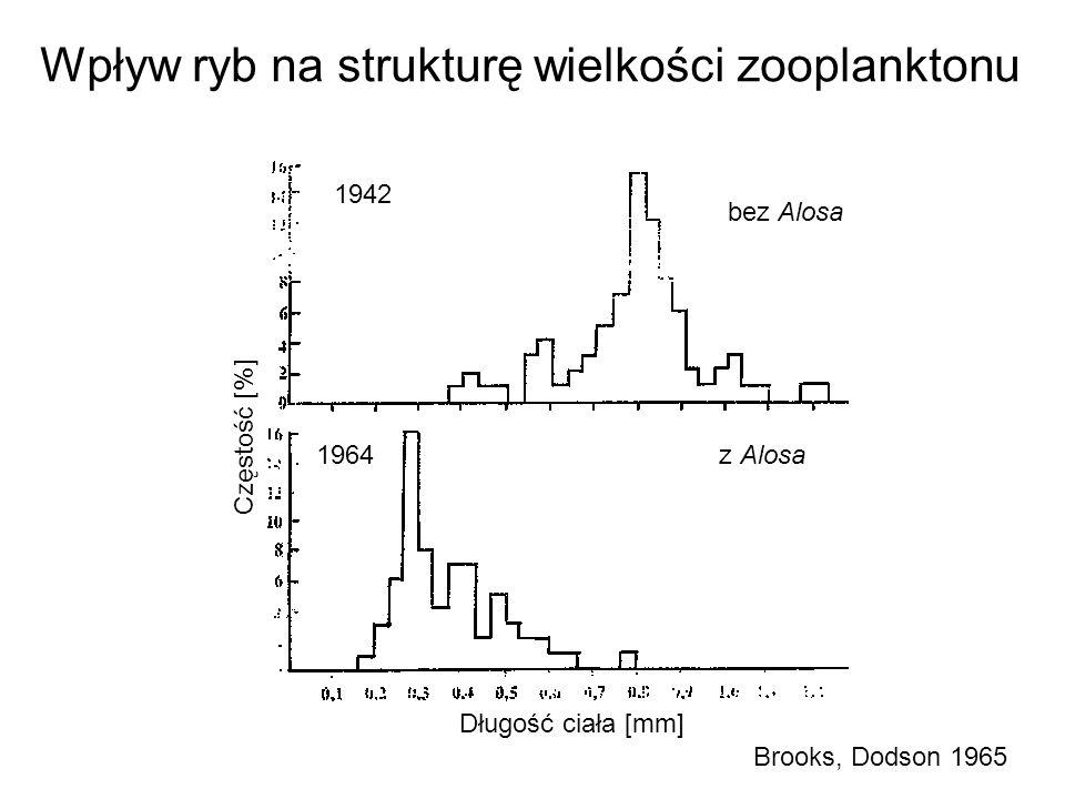 1942 1964 bez Alosa z Alosa Częstość [%] Długość ciała [mm] Wpływ ryb na strukturę wielkości zooplanktonu Brooks, Dodson 1965