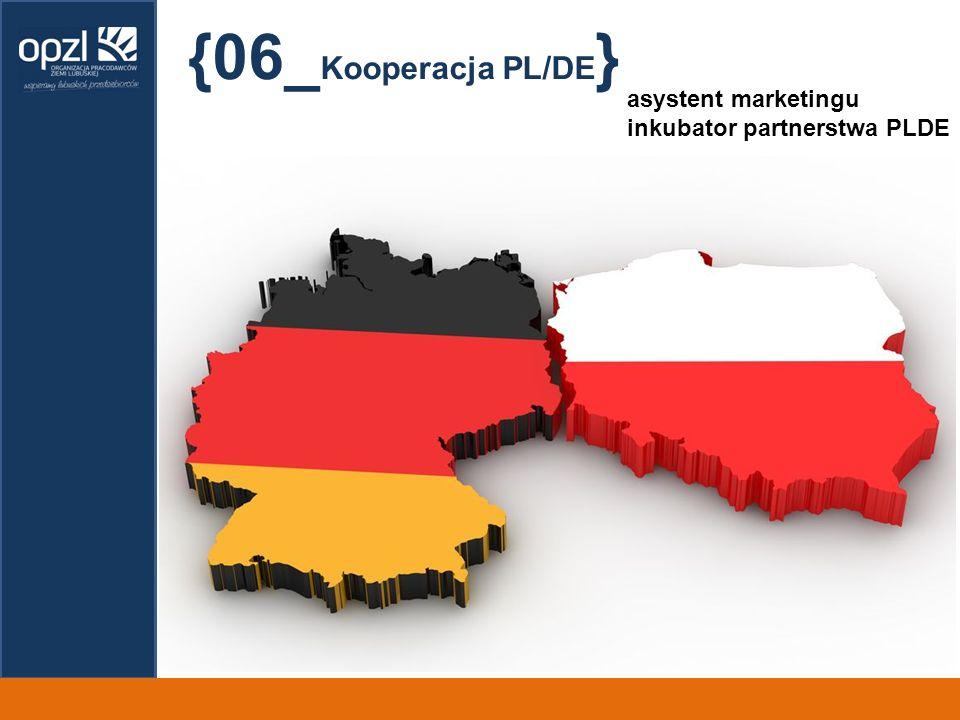 {06_ Kooperacja PL/DE } asystent marketingu inkubator partnerstwa PLDE