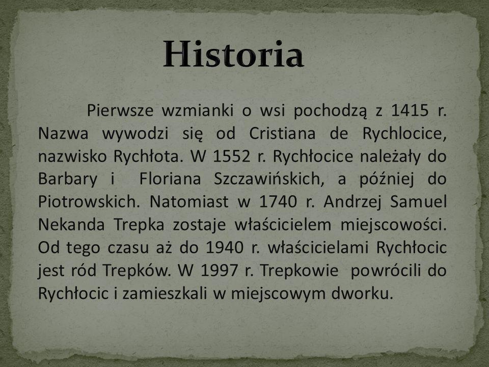 Pierwsze wzmianki o wsi pochodzą z 1415 r. Nazwa wywodzi się od Cristiana de Rychlocice, nazwisko Rychłota. W 1552 r. Rychłocice należały do Barbary i