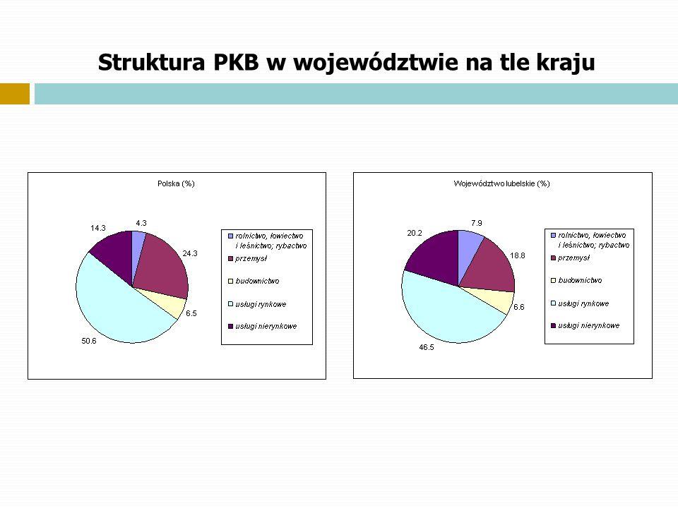 Struktura PKB w województwie na tle kraju