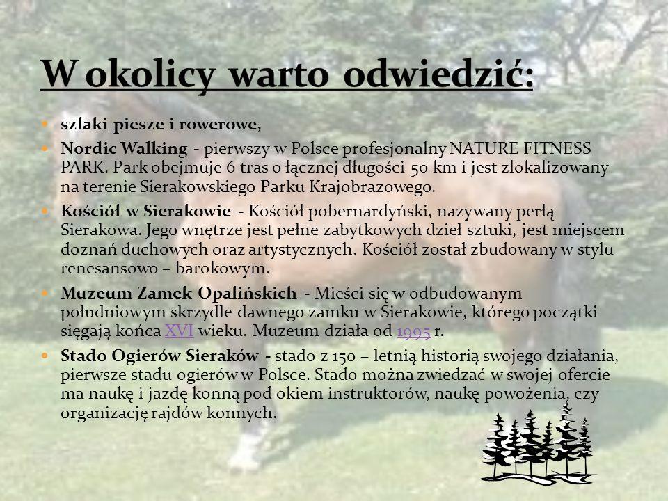 szlaki piesze i rowerowe, Nordic Walking - pierwszy w Polsce profesjonalny NATURE FITNESS PARK.
