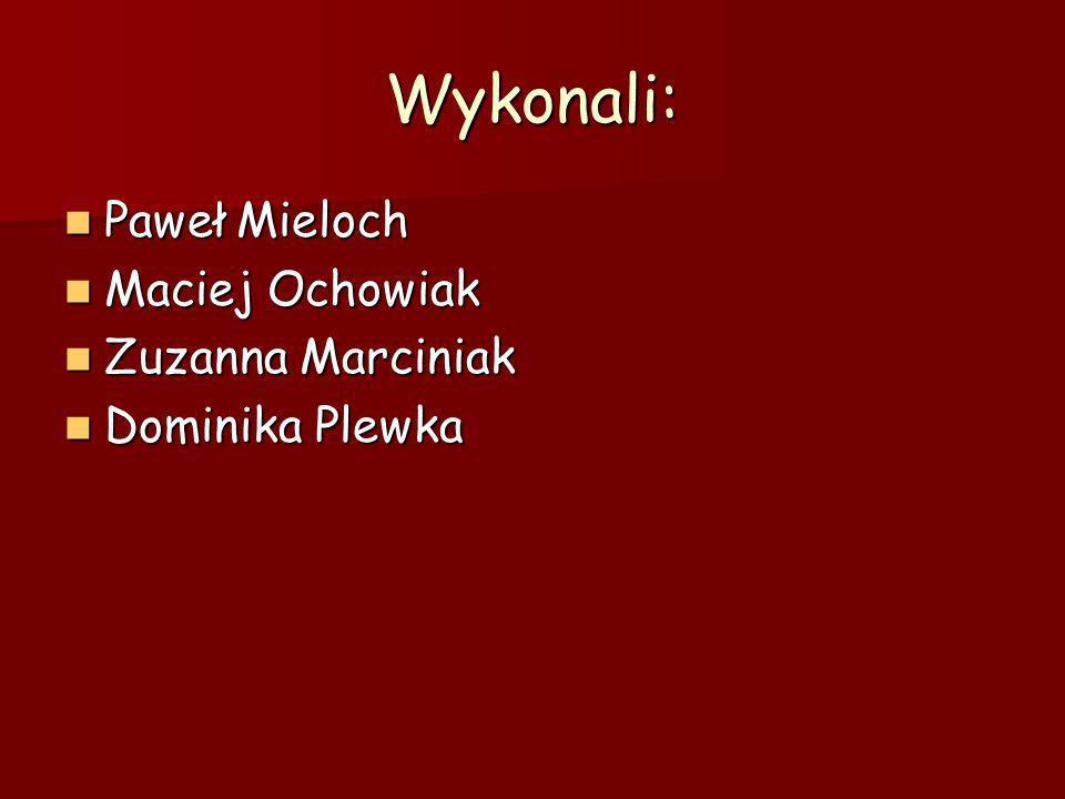 Wykonali: Paweł Mieloch Paweł Mieloch Maciej Ochowiak Maciej Ochowiak Zuzanna Marciniak Zuzanna Marciniak Dominika Plewka Dominika Plewka