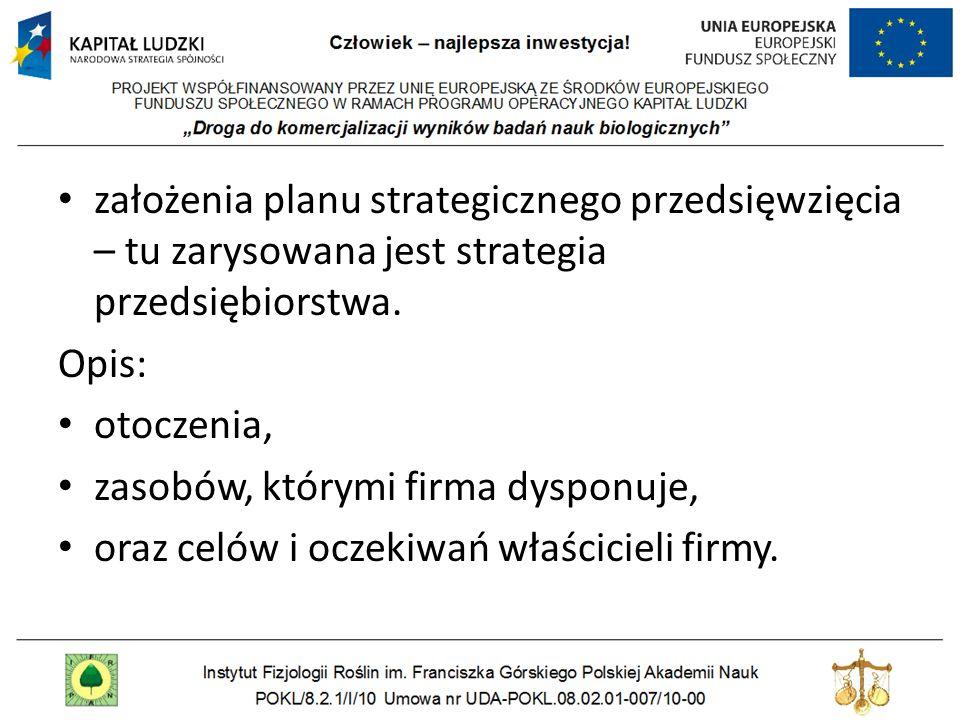założenia planu strategicznego przedsięwzięcia – tu zarysowana jest strategia przedsiębiorstwa. Opis: otoczenia, zasobów, którymi firma dysponuje, ora