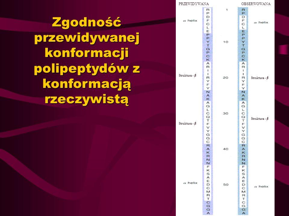 Zgodność przewidywanej konformacji polipeptydów z konformacją rzeczywistą PRZEWIDYWANAOBSERWOWANA Struktura - Struktura -