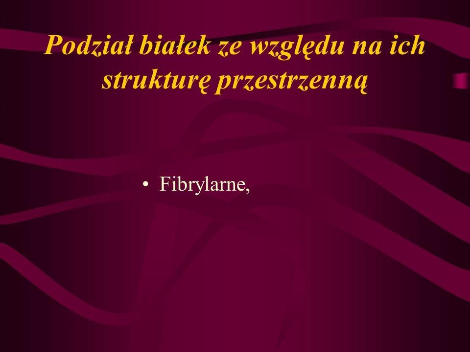 Podział białek ze względu na ich strukturę przestrzenną Fibrylarne,