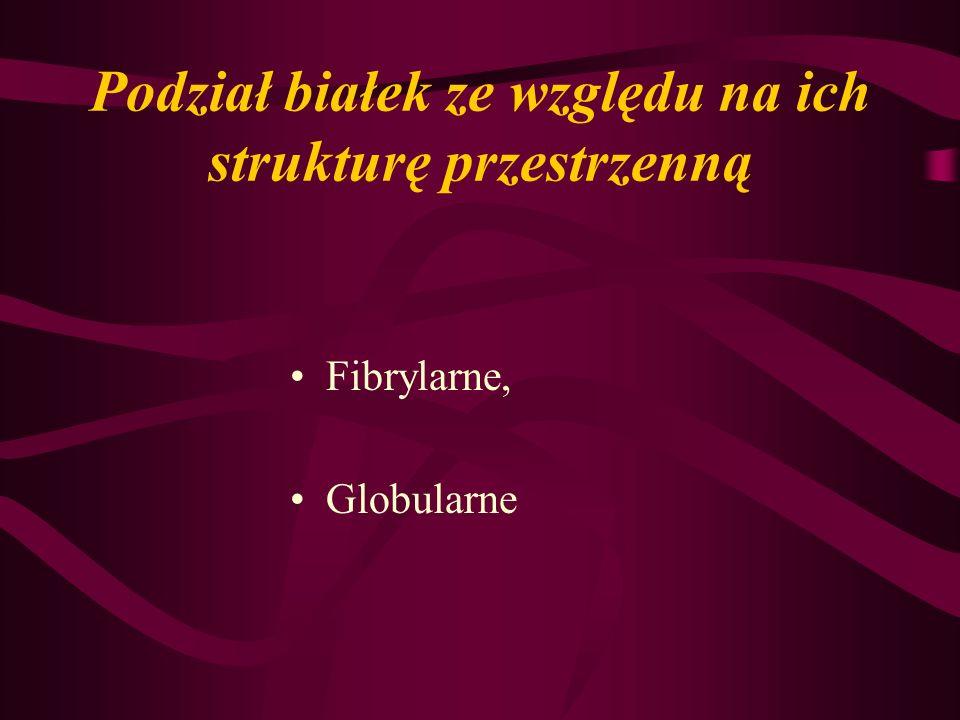 Podział białek ze względu na ich strukturę przestrzenną Fibrylarne, Globularne