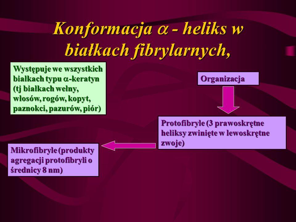 Konformacja - heliks w białkach fibrylarnych, Występuje we wszystkich białkach typu -keratyn (tj białkach wełny, włosów, rogów, kopyt, paznokci, pazur