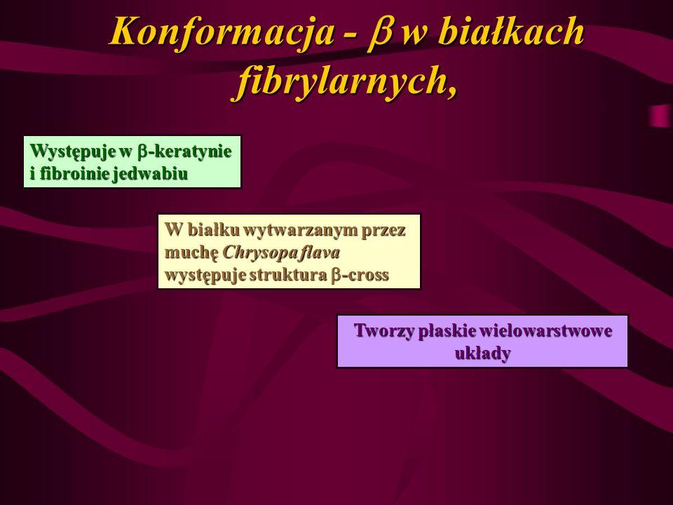 Konformacja - w białkach fibrylarnych, Występuje w -keratynie i fibroinie jedwabiu W białku wytwarzanym przez muchę Chrysopa flava występuje struktura