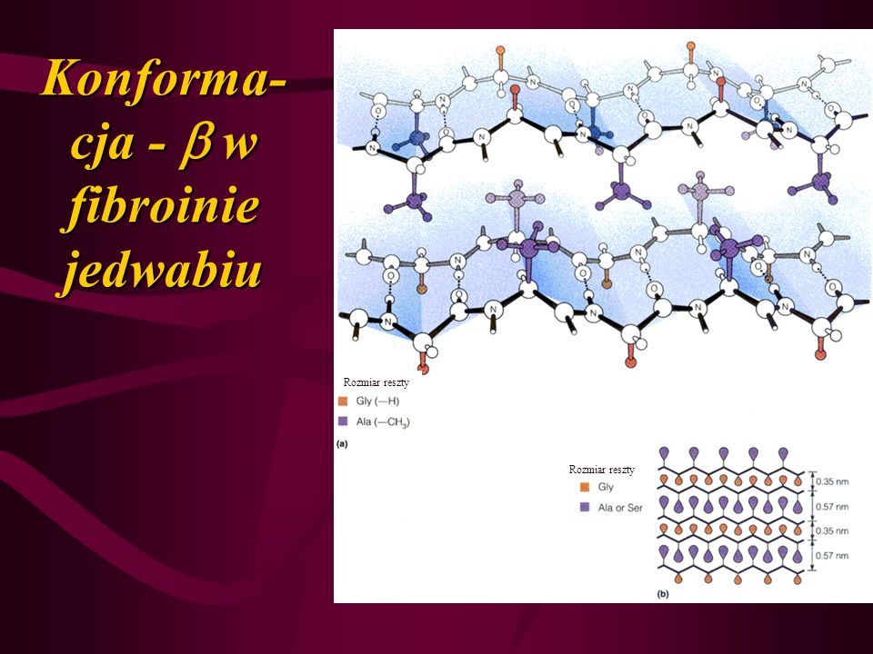 Konforma- cja - w fibroinie jedwabiu Rozmiar reszty