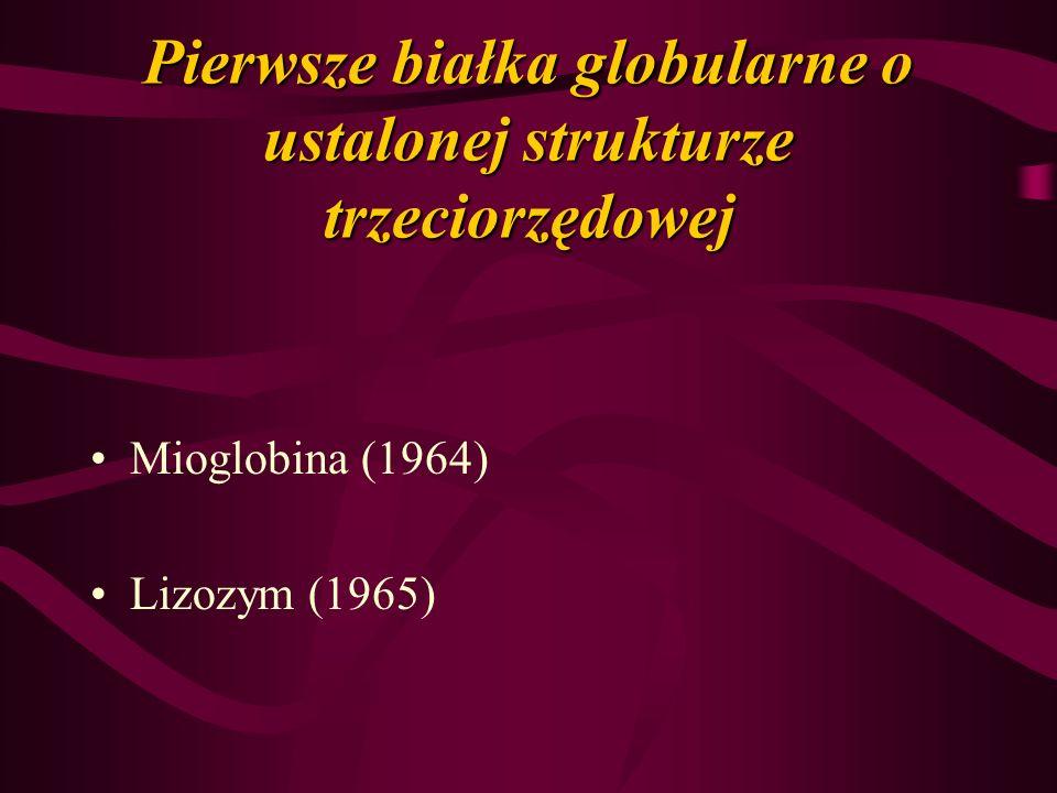 Pierwsze białka globularne o ustalonej strukturze trzeciorzędowej Mioglobina (1964) Lizozym (1965)