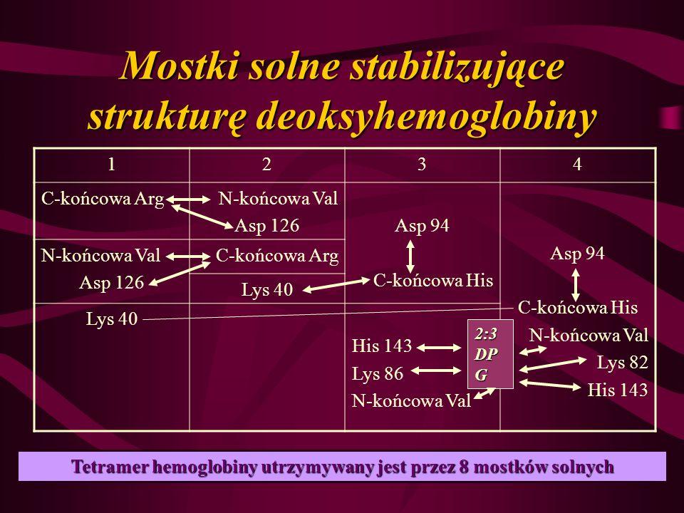 Mostki solne stabilizujące strukturę deoksyhemoglobiny 1234 C-końcowa ArgN-końcowa Val Asp 126Asp 94 C-końcowa His Asp 94 C-końcowa His N-końcowa Val