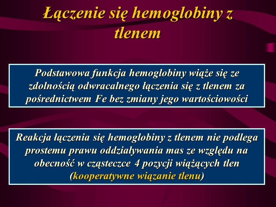 Łączenie się hemoglobiny z tlenem Podstawowa funkcja hemoglobiny wiąże się ze zdolnością odwracalnego łączenia się z tlenem za pośrednictwem Fe bez zm