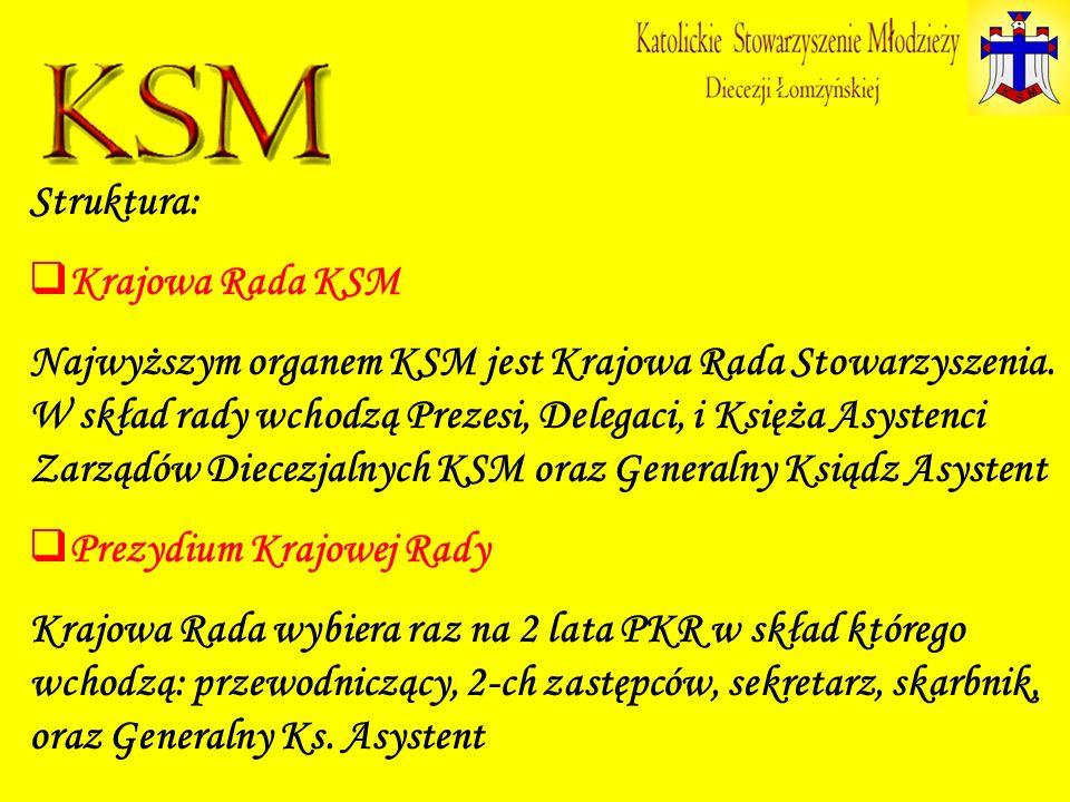 Struktura: Krajowa Rada KSM Najwyższym organem KSM jest Krajowa Rada Stowarzyszenia. W skład rady wchodzą Prezesi, Delegaci, i Księża Asystenci Zarząd