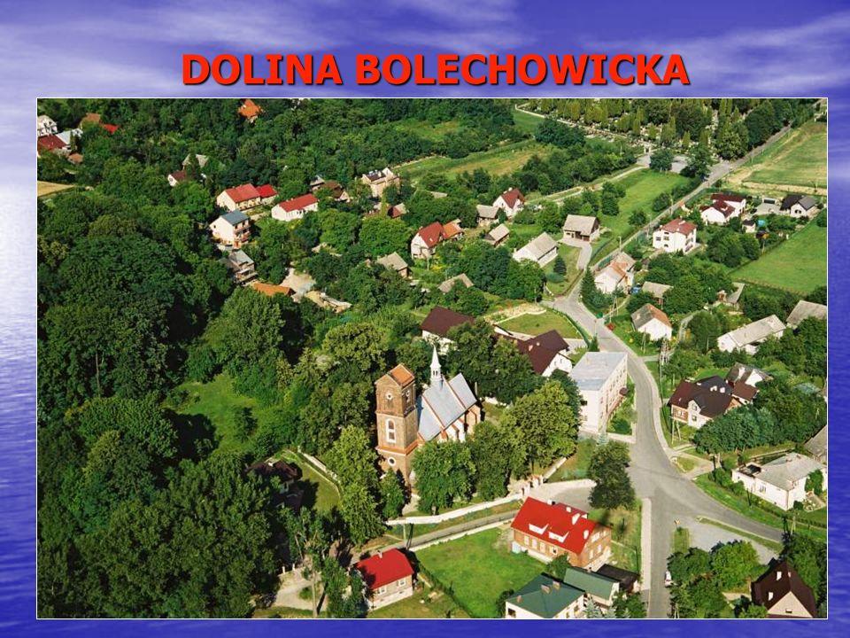 SPECJALNA STREFA EKONOMICZNA (I) Na terenie Gminy Zabierzów istnieje specjalna strefa ekonomiczna, która jest częścią strefy pn.