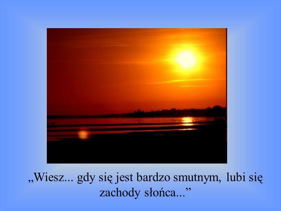 Wiesz... gdy się jest bardzo smutnym, lubi się zachody słońca...
