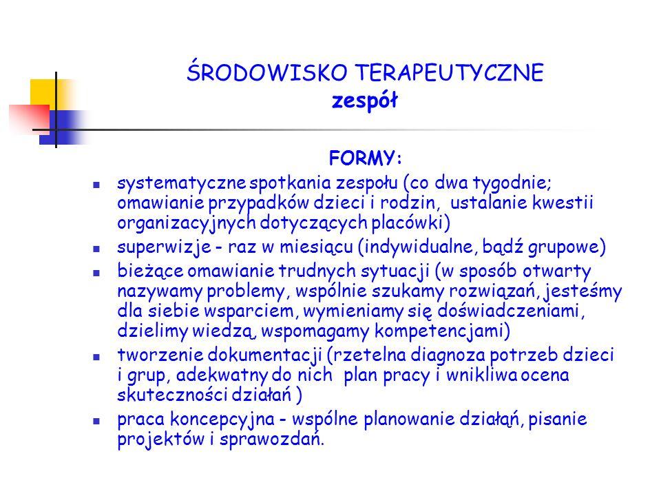 FORMY: systematyczne spotkania zespołu (co dwa tygodnie; omawianie przypadków dzieci i rodzin, ustalanie kwestii organizacyjnych dotyczących placówki)