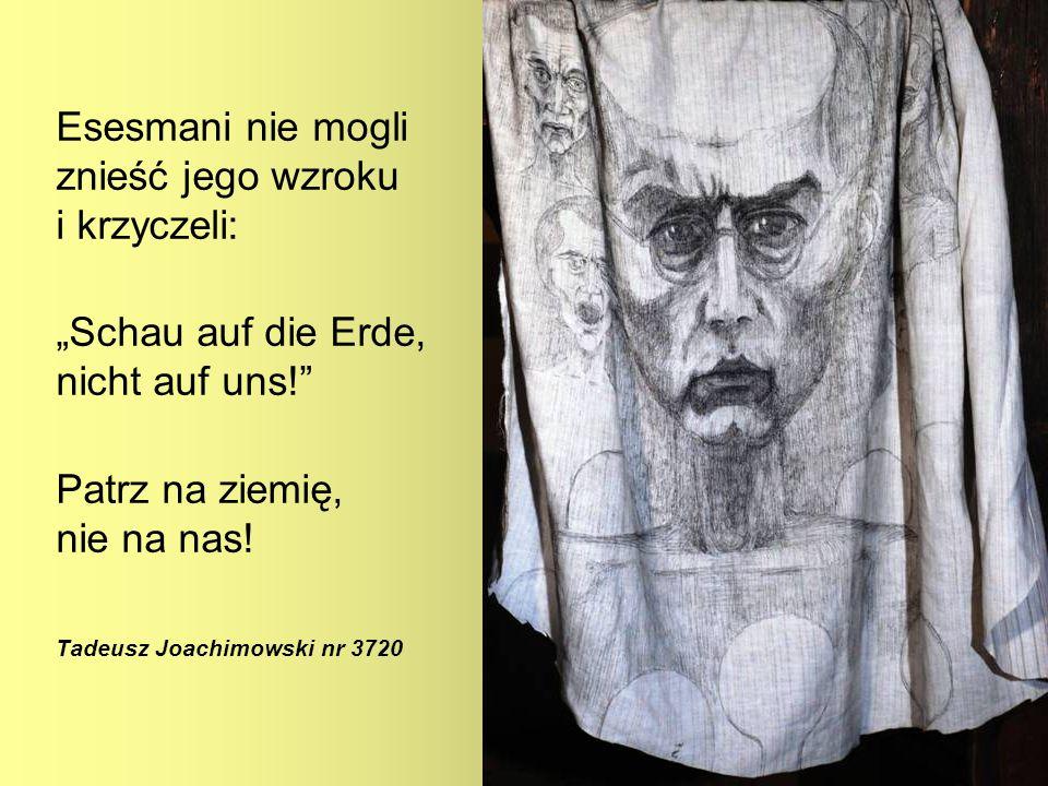 Esesmani nie mogli znieść jego wzroku i krzyczeli: Schau auf die Erde, nicht auf uns! Patrz na ziemię, nie na nas! Tadeusz Joachimowski nr 3720