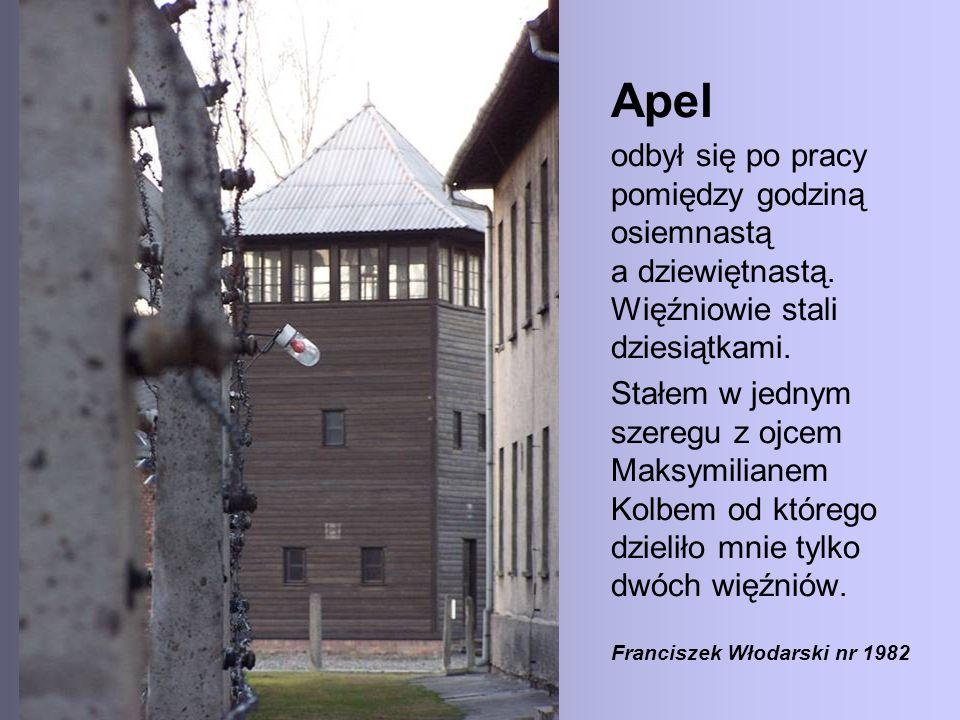 Apel odbył się po pracy pomiędzy godziną osiemnastą a dziewiętnastą. Więźniowie stali dziesiątkami. Stałem w jednym szeregu z ojcem Maksymilianem Kolb
