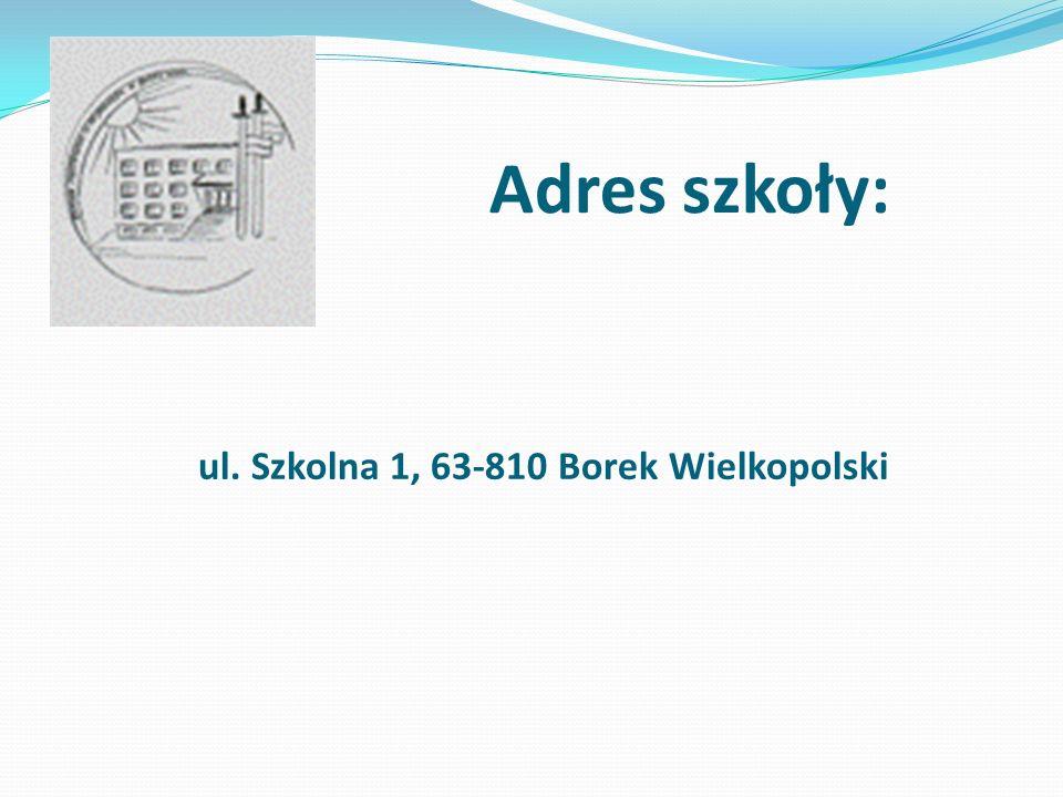 Adres szkoły: ul. Szkolna 1, 63-810 Borek Wielkopolski