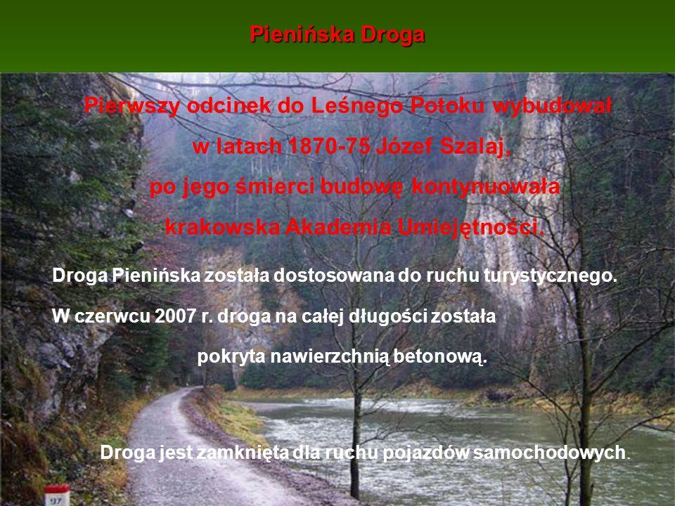 Pienińska Droga Pierwszy odcinek do Leśnego Potoku wybudował w latach 1870-75 Józef Szalaj, po jego śmierci budowę kontynuowała krakowska Akademia Umi