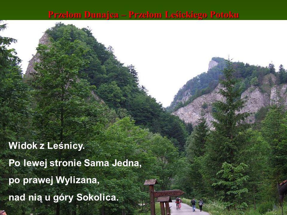 Przełom Dunajca – Przełom Leśickiego Potoku Widok z Leśnicy. Po lewej stronie Sama Jedna, po prawej Wylizana, nad nią u góry Sokolica.