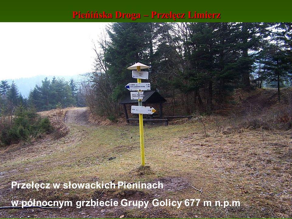 Pieńińska Droga – Przełęcz Limierz Przełęcz w słowackich Pieninach w północnym grzbiecie Grupy Golicy 677 m n.p.m