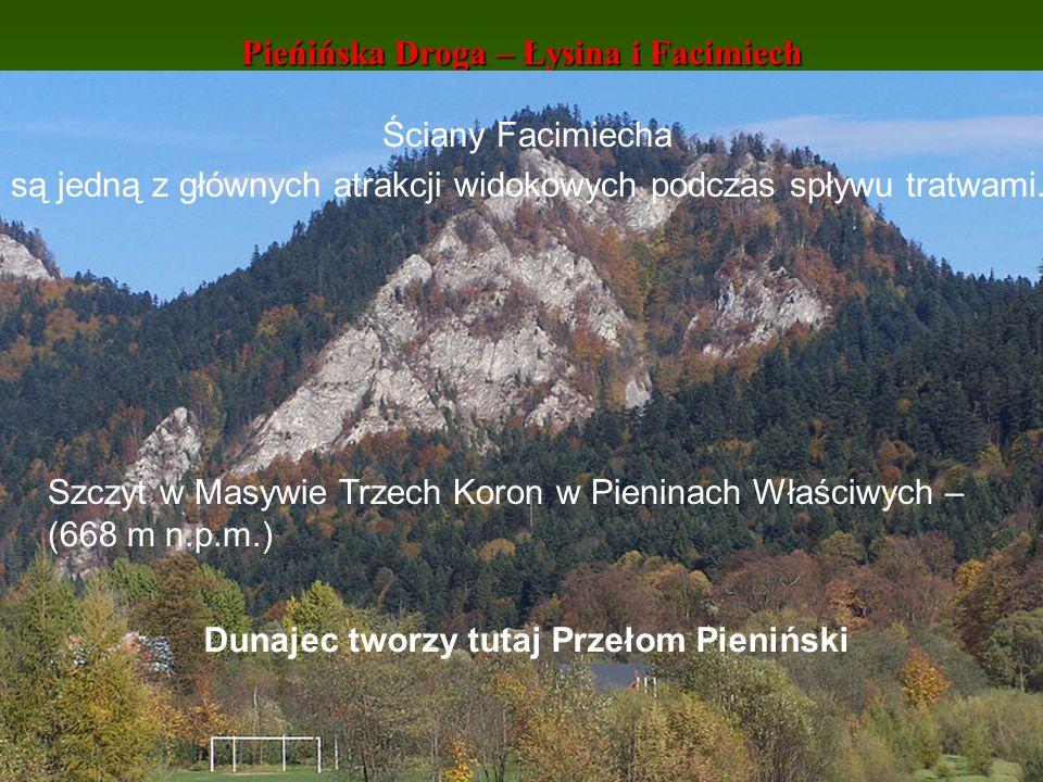 Pieńińska Droga – Łysina i Facimiech Szczyt w Masywie Trzech Koron w Pieninach Właściwych – (668 m n.p.m.) Dunajec tworzy tutaj Przełom Pieniński Ścia