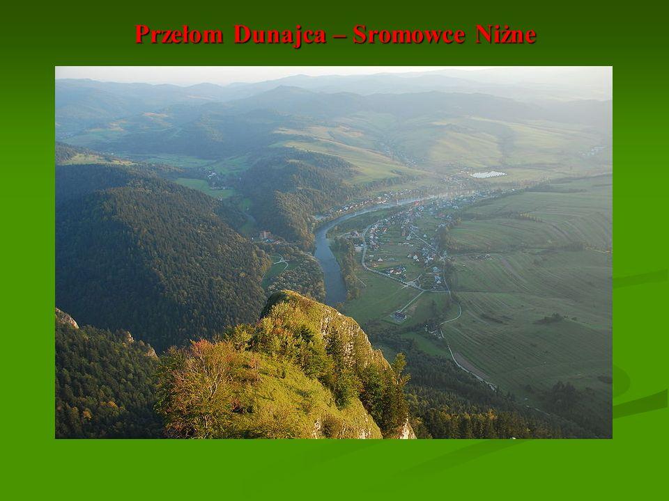 Przełom Dunajca – Sromowce Niżne