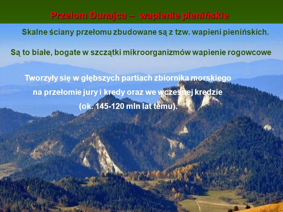 Przełom Dunajca – wapienie pienińskie Tworzyły się w głębszych partiach zbiornika morskiego na przełomie jury i kredy oraz we wczesnej kredzie (ok. 14