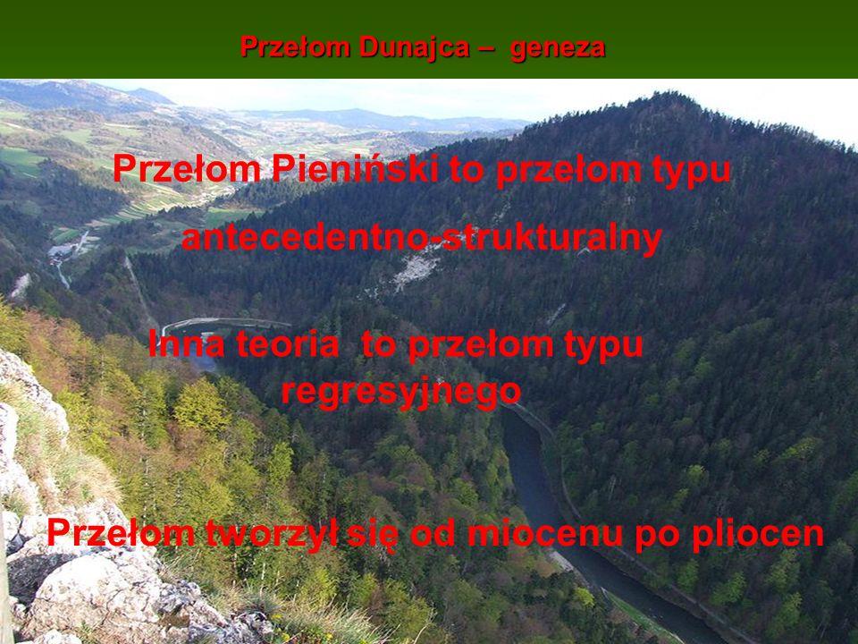 Przełom Dunajca – geneza Przełom Pieniński to przełom typu antecedentno-strukturalny Inna teoria to przełom typu regresyjnego Przełom tworzył się od m