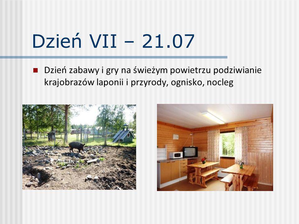Dzień VIII – 22.07 Dzień zabawy i gry na świeżym powietrzu podziwianie krajobrazów laponii i przyrody.